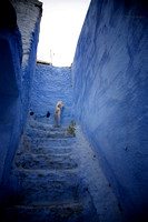 A Day in the Life of a Chefchaouen Cat IV